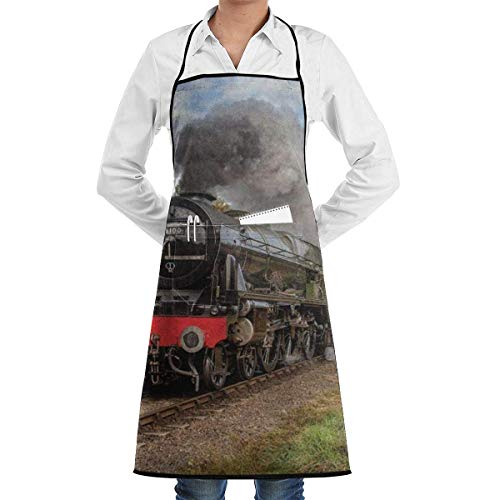 Drempad Schürzen Steam Train Scottish Apron Kitchen Cooking Commercial Restaurant Apron for Women and Men-Perfect for Gifts