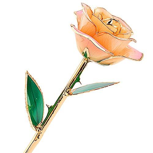 zjchao gold rose, echte rose vergoldet, gold rose 24 karat rose silber blumen valentinstag Love Forever 24k vergoldet Echt Rose, Geschenk der Liebe (weiß rosa)