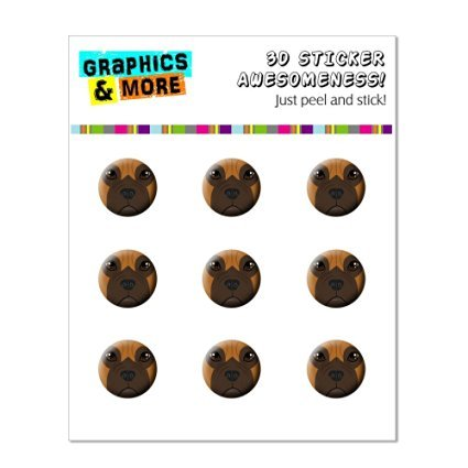 Graphics and More Boxer Face - Dog Pet Home Button Stickers Fits Apple iPhone 4/4S/5/5C/5S, iPad, iPod Touch - Non-Retail Packaging - Clear