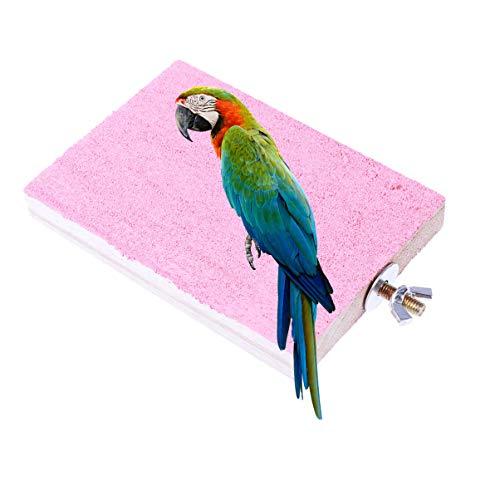 POPETPOP 1Pz Parrot Perches Platform Playground Parrot Perches Stand Board Stand Rack per Gabbia per Uccelli Gabbia per Animali Domestici