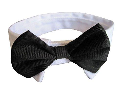 niceEshop(TM) Formal Hund Katze Halsschleife Fliege(Schwarz Weiß)