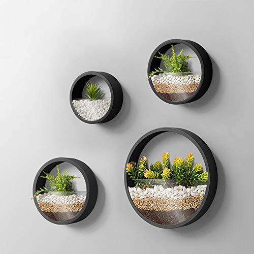 KnikGlass Lot de 4 vases muraux en métal pour plantes succulentes