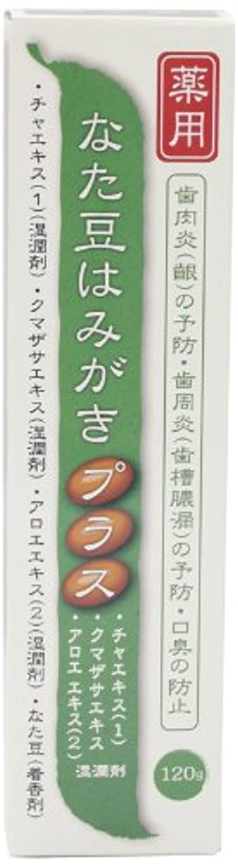 エンディング修羅場分類するプラセス製薬 薬用なた豆はみがきプラス 120g