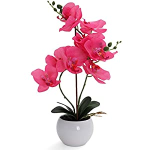 Bornbridge Artificial Orchid – Fake Orchid Plant with Real Touch Flowers – Faux Orchid with Long Stem Artificial Flowers – Potted Orchid/Plastic Orchid Fake Flowers