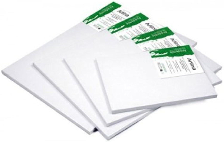 precios al por mayor Artina Akademie - Set de 10 piezas - 70x120 70x120 70x120 cm - Lienzos blancoos para pintar - Con bastidor de alta calidad - 280g m2  se descuenta