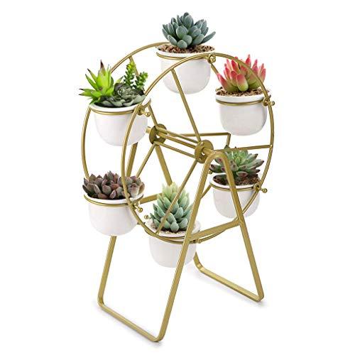 SUMNACON - Supporto per piante grasse a ruota panoramica, in ceramica, con supporto per vaso da fiori e vaso, colore: Oro (non include pianta)