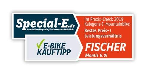 E-MTB FISCHER  MTB MONTIS 60i (2019) grün E-Mountainbike Bild 6*