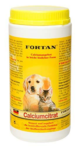 Fortan Calciumcitrat, 1er Pack (1 x 600 g)