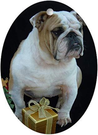Kysd43Mill Norma Sees Weihnachtsmann, ovale Keramik-Weihnachtsornamente für Weihnachtsbaum-Dekoration, Neuheit Geschenke für Kinder Mädchen Frauen