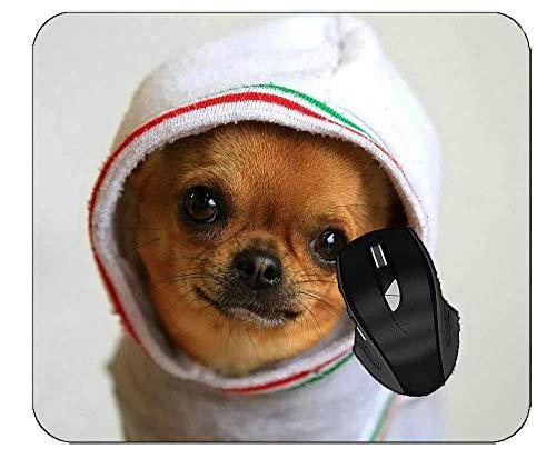 Professionelles Mousepad-Tier, Chihuahua, Hund, der ein rutschfestes Kopftuch-Gummi-Mousepad trägt