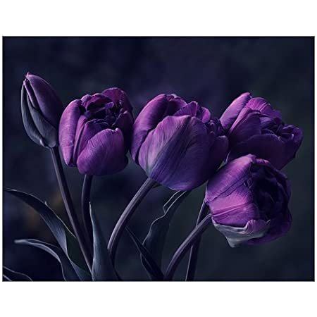 Creative Beautiful Modern Abstract Artwork Canvas Wall Art Pretty Deep Purple Tulip Flower Canvas Print 14 X 11 Inch Stretched And Framed Painting Artwork Home Decor Wall Living Room