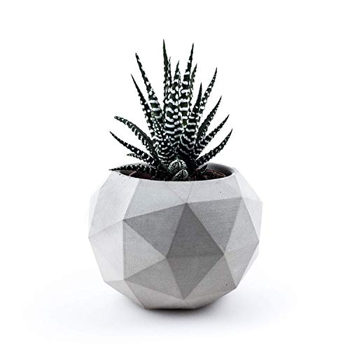 raw concrete- Geometrischer Blumentopf (low polygon) aus Beton