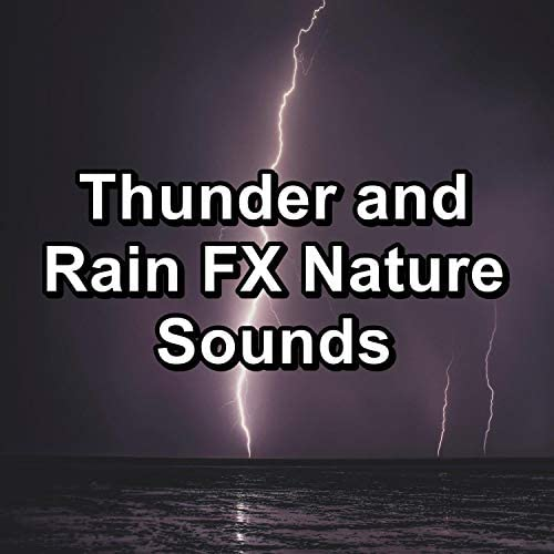 Nature Sounds for Relaxation, Nature Sounds for Sleep & Nature Music