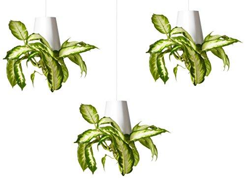 Sky Planter Recycled piccoli, vasi sospesi, set di 3, colore: Bianco