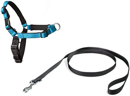 Harnais pour Chien Moyen/Large Deluxe Easy Walk (M), Réfléchissant, Résistant, Facile à Utiliser, Anti-Traction, avec Doublure en Néoprène pour un Confort Maximal - Bleu Océan