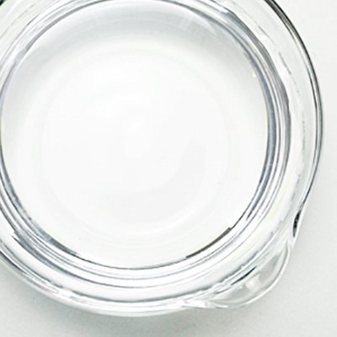 不道徳目指すボイラー1,3-プロパンジオール[PG] 100ml 【手作り石鹸/手作りコスメ】