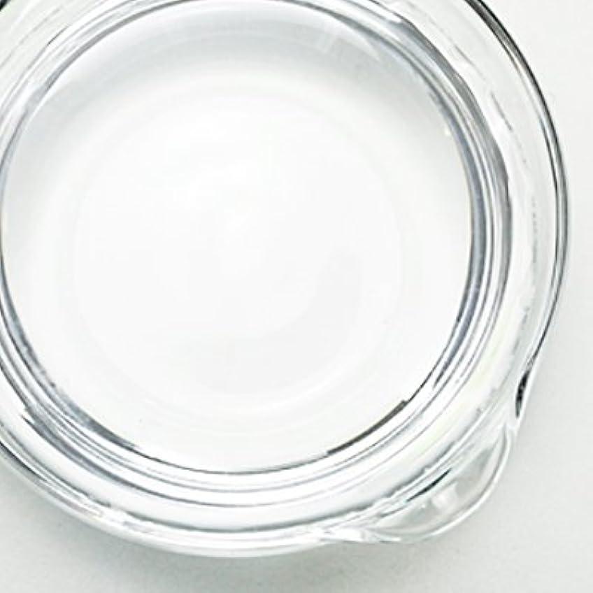 ドレス苦いサーバント1,3-プロパンジオール[PG] 100ml 【手作り石鹸/手作りコスメ】