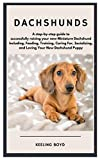 Dachshunds: A step-by-step guide to successfully raising your new Miniature Dachshund Including, Feeding, Training, Caring For, Socializing, and Loving Your New Dachshund Puppy
