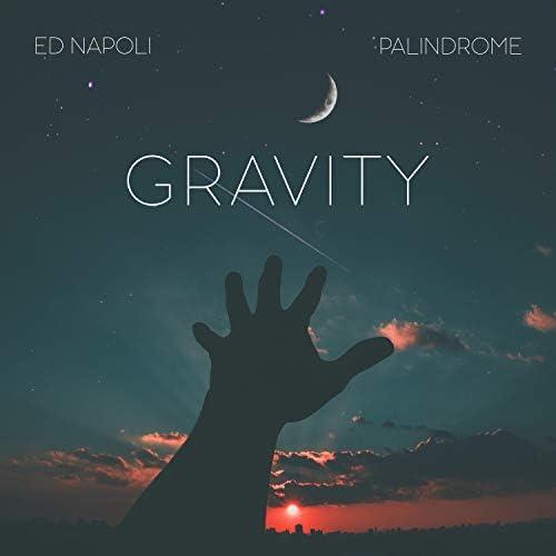 Palindrome & Ed Napoli