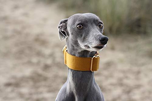 Collare per cani in tessuto giallo senape con frusta e levrieri, taglia M