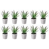 Ikea FEJKA - Plantas Artificiales para Escritorio (6 cm, 10 Unidades)