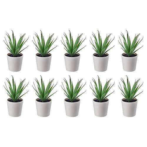 Ikea FEJKA Mini plantas de escritorio artificiales suculentas en macetas (6 centímetros)...