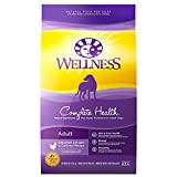 Wellness Complete Health Natural Adult