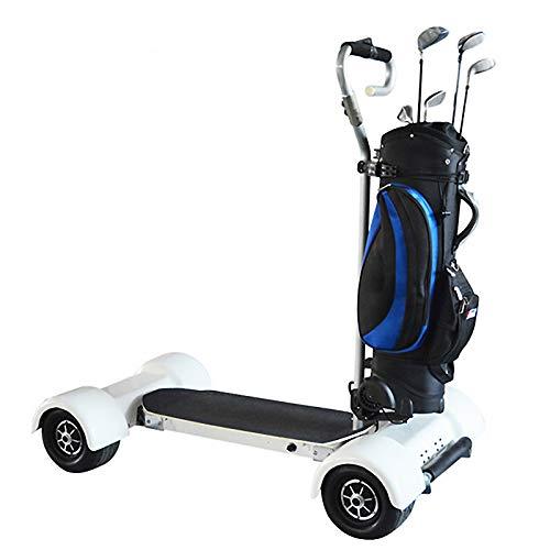 Stoge Carro de Golf de Cuatro Ruedas eléctrico 1000W Vehículo eléctrico de Scooter Doble para Exteriores con batería de Litio 20.8AH 30km/h Carga max120kg
