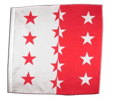 Flagge/Fahne Schweizer Kanton Wallis - 30 x 30 cm
