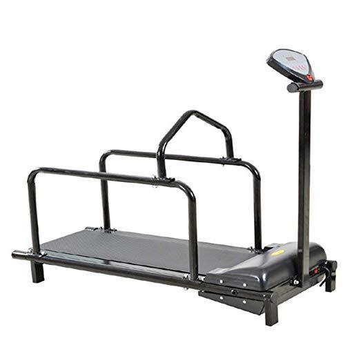 Chien Tapis De Course, Remise en Forme Animaux Treadmill Exercice Intérieur, Pet Équipement d