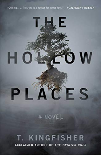 Image of The Hollow Places: A Novel