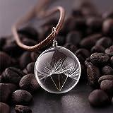 Lot de 3 pendentifs en cristal pissenlit avec cordon pour la fabrication de bijoux, cadeaux de Noël pour filles