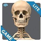 SKELETAL ANATOMY GAME LITE
