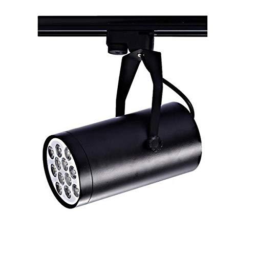 Juego de 2 lámparas de techo con rieles de corriente, luz negra + 12 W, color blanco