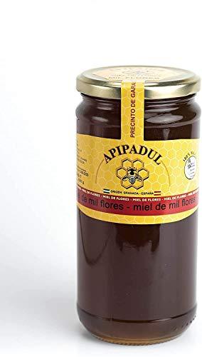 Miel 100{1b5deb4b4f28937b4802cb96f7640038690b58df9646d494b478390deb2c2175} pura de abeja, natural, artesana, producto nacional. Sabor excepcional por su gran pureza.(varios sabores) Envío GRATIS 24h. (Mil Flores, 1kg)
