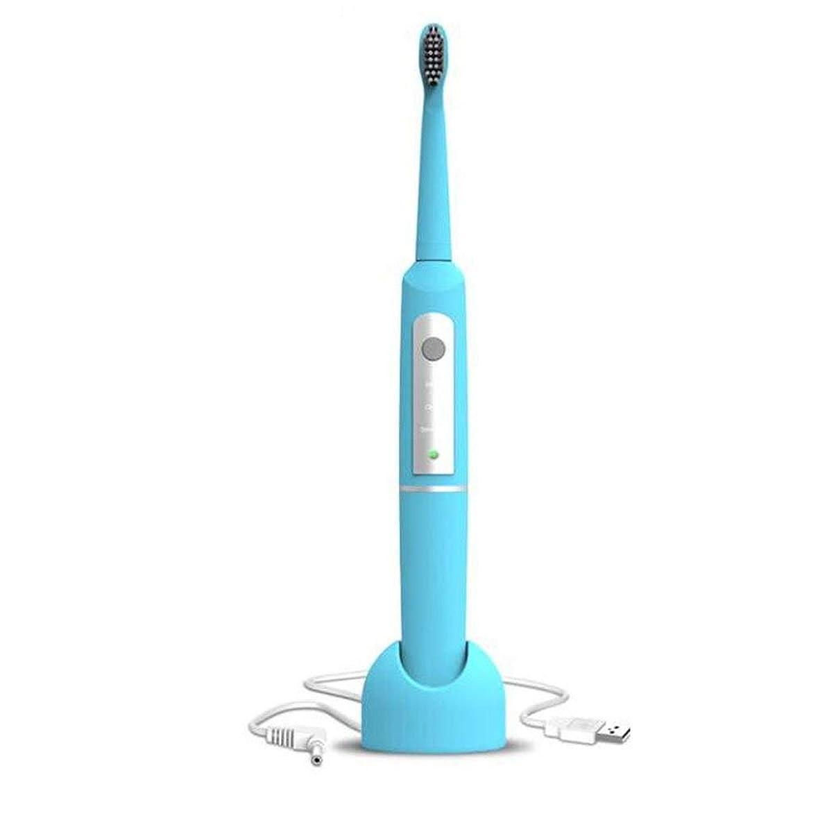 電動大人用歯ブラシ充電式ソニック自動歯ブラシカップル電動歯ブラシ(カラー:ブルー)