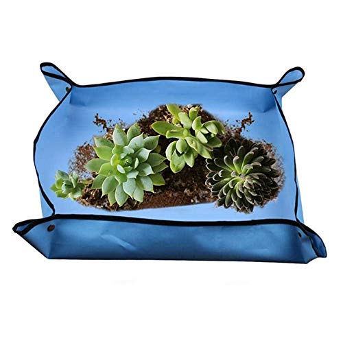 Verplanten Verpotten Plant Change Soil Watering Pads vetplanten tuinieren Mat Foldable Indoor Bonsai Work Doek Tuinieren Mat: China, A