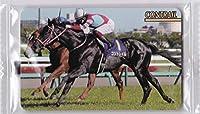 まねき馬№2216 コントレイル コレクション