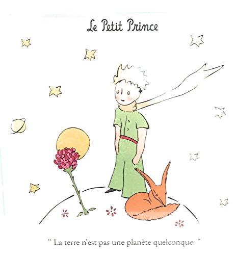 Dessous de plat en verre lisse- Le petit prince - 20 x20 cm