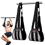 DMoose Fitness Hanging Ab Straps for Abdominal Muscle Building and Core Strength Training, Arm Support for Ab Workouts, Padded Gym Equipment for Men and Women (Gray)