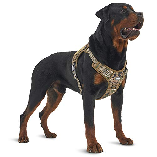 Awesome Dog Harness