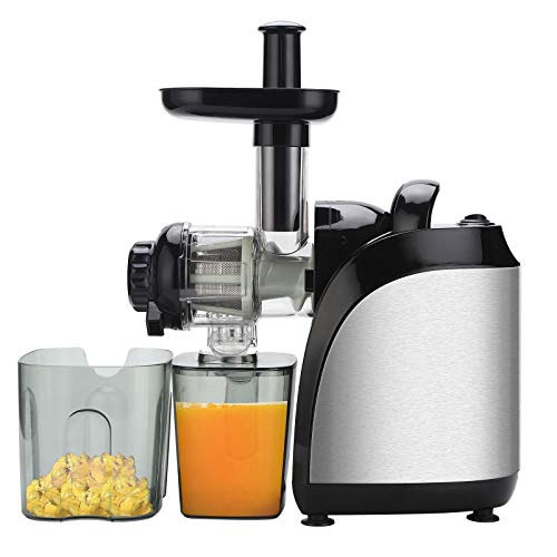 SASAYU Juicer Machines 2 in 1 Slow Masticating Two-speed Mechanical Horizontal Juicer with Juice Cup & Brush for Fruits and Vegetables