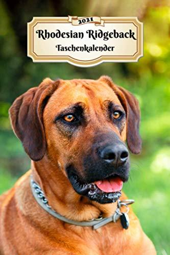 2021 Rhodesian Ridgeback Taschenkalender: 107 Seiten, DIN A5   12 Monate Kalender   Terminplaner   Tagebuch   Terminkalender   Organizer für Hundeliebhaber