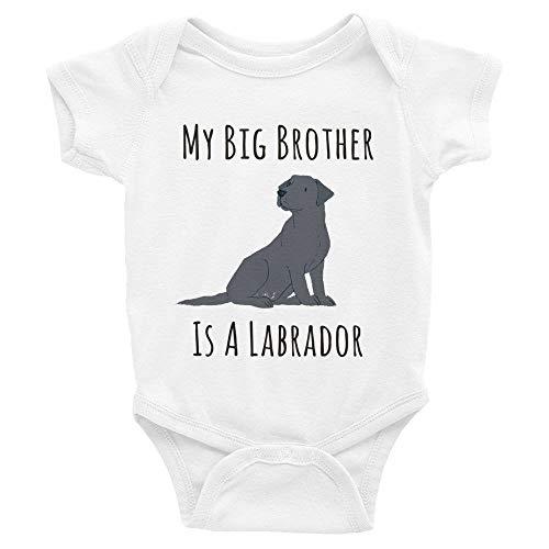 Toll2452 Body para bebé, mameluco para bebé con texto en inglés 'My Brother Sister is a Labrador' para regalo de recién nacido, traje unisex de manga corta