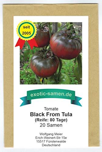Sehr schmackhafte Tomate - Black from Tula - 20 Samen