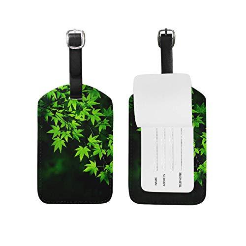 shenguang My Daily Green Maple Tree Leaves Etichetta per bagagli Borsa in pelle PU Valigie Etichetta bagaglio 1 pezzo