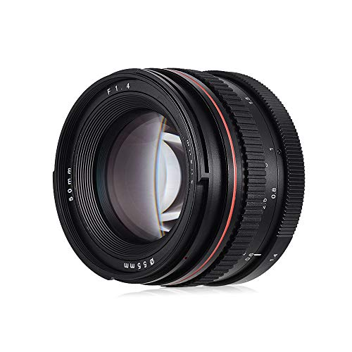 Andoer 50mm f / 1.4 USM Lente de foco antropomórfico padrão de grande abertura Lente de câmera de baixa dispersão Substituição compatível com Canon 100D 200D 350D 450D 500D 600D 65