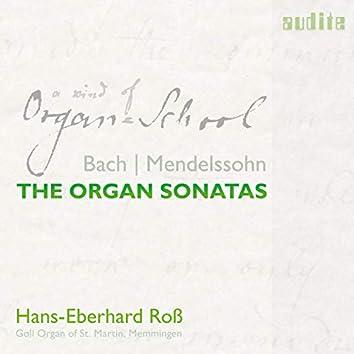 J.S. Bach: Organ Sonata No. 2 in C Minor, BWV 526: II. Largo