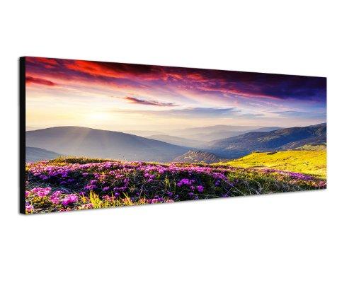 Paul Sinus Art Panoramabild auf Leinwand und Keilrahmen 120x40cm Ukraine Blumenwiese Berge Abendsonne