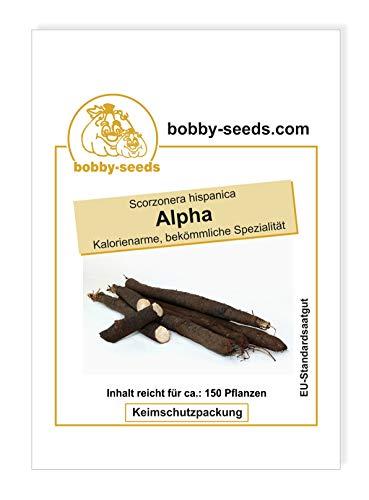 Alpha Schwarzwurzelsamen von Bobby-Seeds Portion